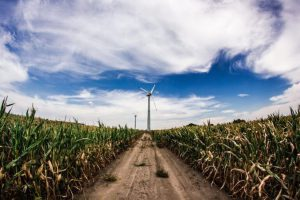 The boom of clean tech